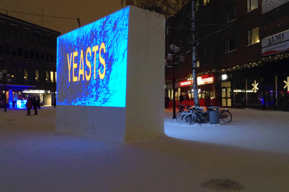 2014-02-01-22.23.42